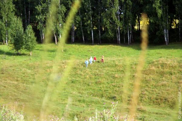 Пойдём в мой край — поля, луга Орловщины...