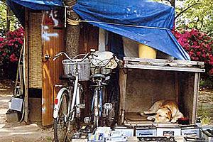 Среднестатистический вариант жилища бездомного человека в Японии