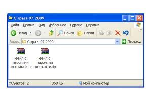 Общий вид файлов с паролями Вконтакте