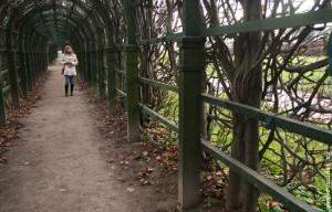 В парке «Нескучный сад». 2011 год.