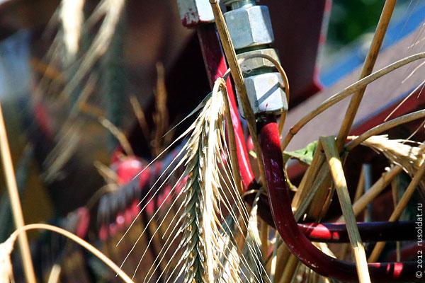 Самый большой в мире комбайн способен убирать все известные сельскохозяйственные культуры, включая огурцы и кукурузу.